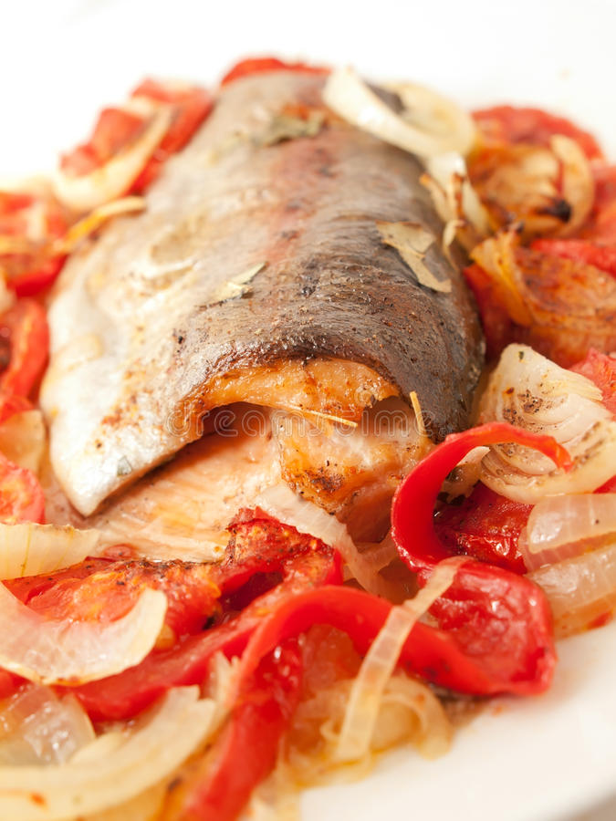 被烘烤的鳟鱼用蕃茄和葱地中海食谱的 免版税库存图片