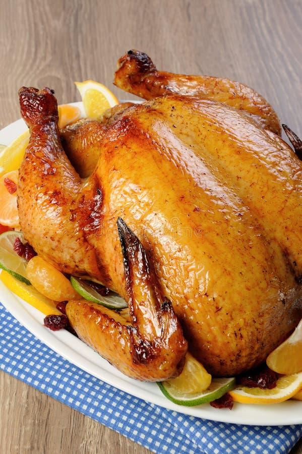 Download 被烘烤的鸡用桔子 库存图片. 图片 包括有 细菌学, 调味, 部分, 设置, 食物, 安排, 细分, 柑橘 - 62538057