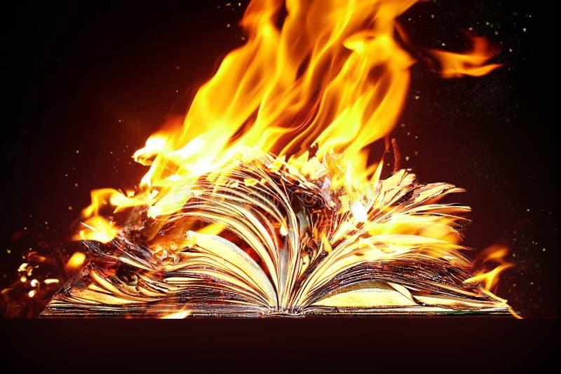 被烧的书和火 免版税库存图片