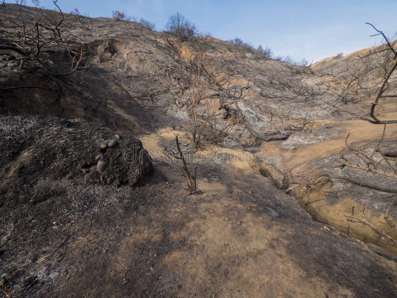 被烧的和被烧焦的山坡在加利福尼亚 图库摄影