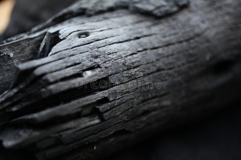 被烧的木头 从火的黑木头 在木头的圆环 ashame 在煤炭烧的木头 库存照片