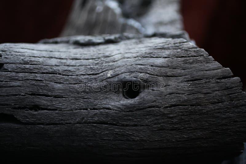 被烧的木头 从火的黑木头 在木头的圆环 ashame 在煤炭烧的木头 免版税库存照片