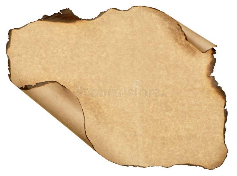 被烧的板料老纸被隔绝的白色背景 库存图片