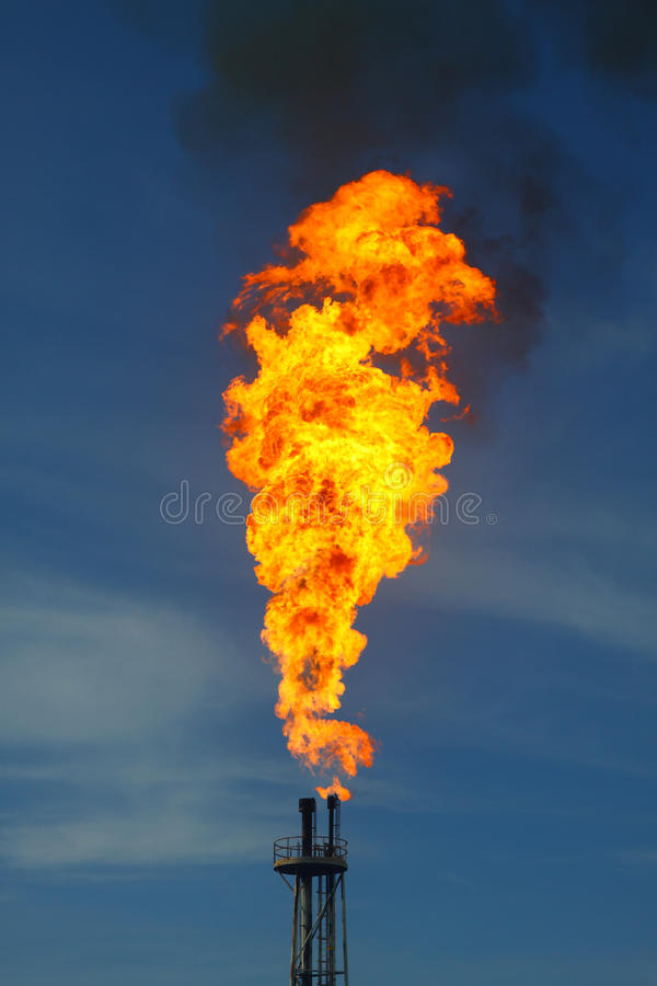 被烧的火 免版税库存图片
