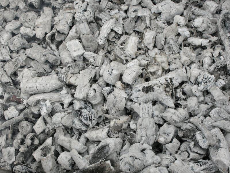 从被烧的草丛的灰 免版税库存图片
