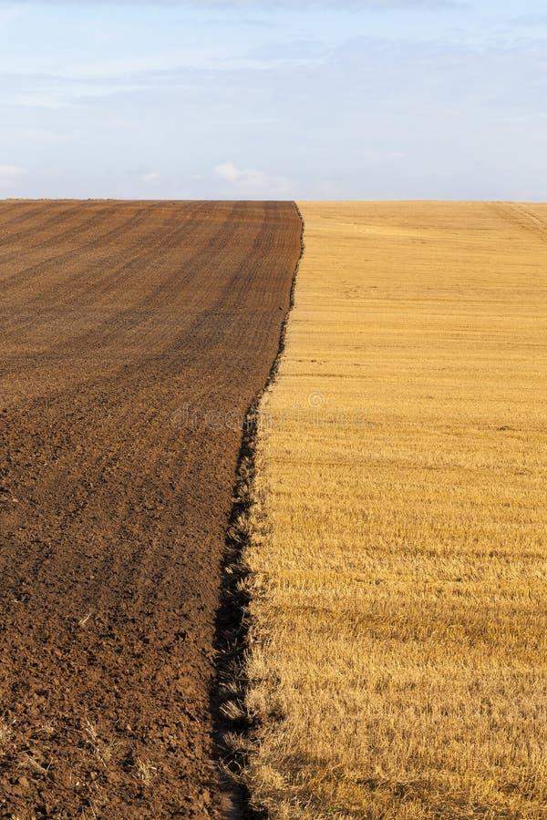 被犁的农业领域 免版税库存照片