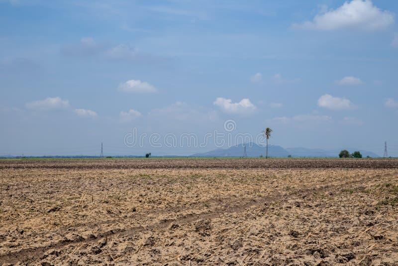 在春天的被犁的领域与天空蔚蓝 被犁的地面,与棕色石头和宽松土壤 免版税库存照片