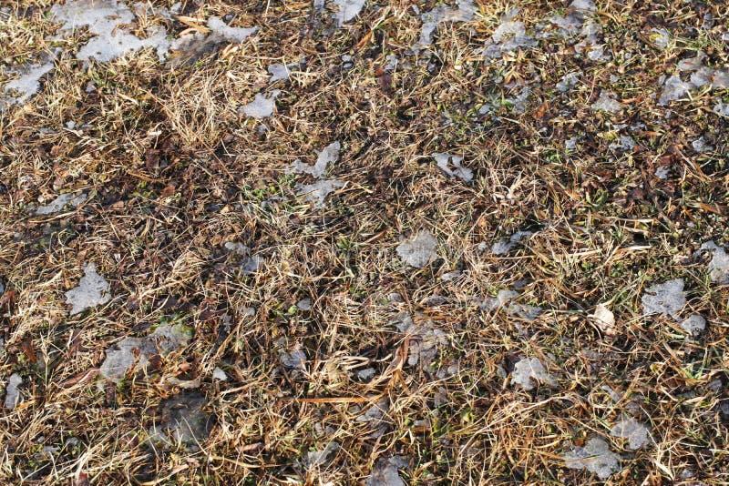 被犁的春天领域 野外工作的季节的初期 农业的和工业的农厂事务 雪在地面上熔化 温暖 库存图片
