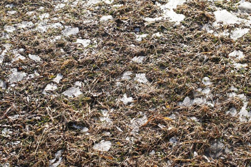 被犁的春天领域 野外工作的季节的初期 农业的和工业的农厂事务 雪在地面上熔化 温暖 免版税库存照片
