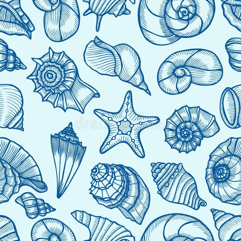 被画的贝壳的汇集 向量例证