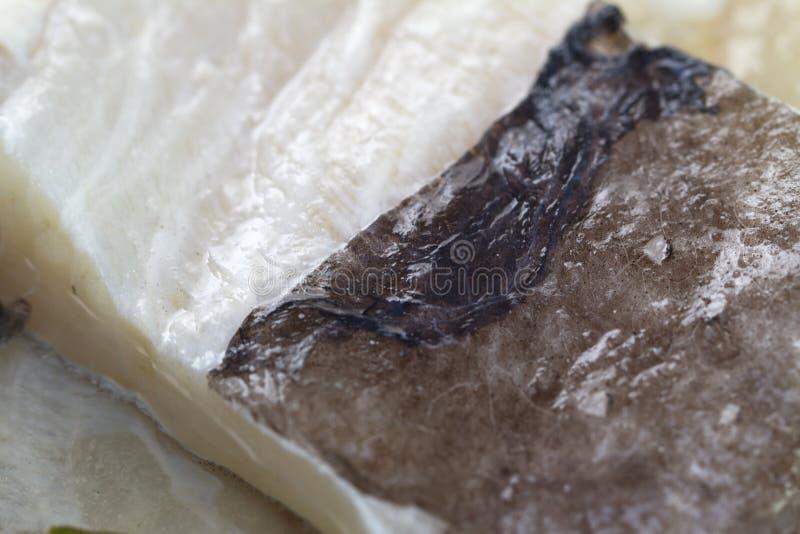 被盐溶的鳕鱼 免版税库存照片