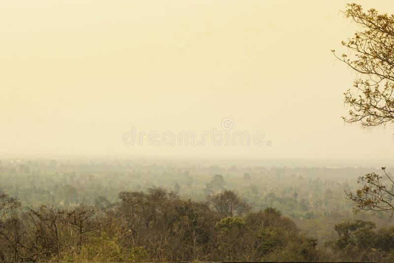 被盖以烟雾的自然 免版税库存照片
