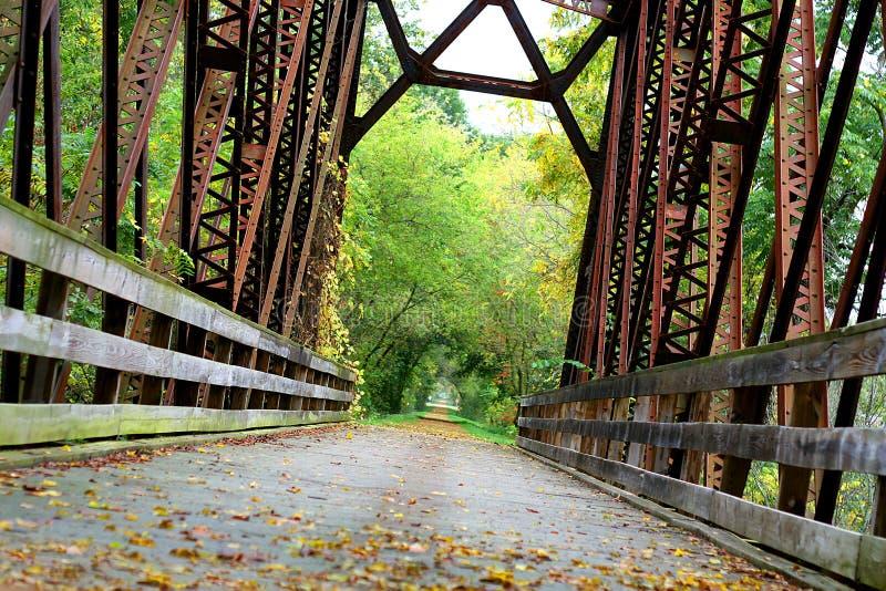 被盖的铁桥梁在森林 库存照片