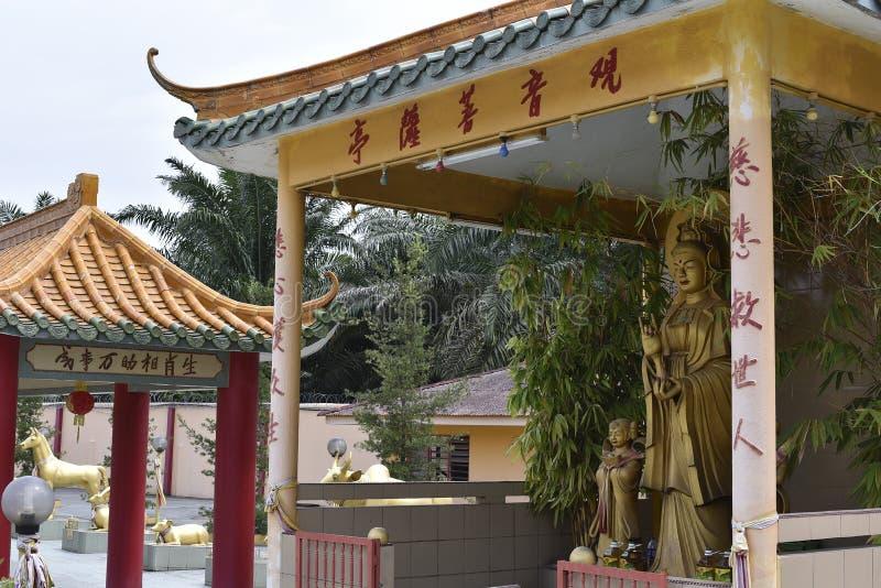 被看见的飞腓节Yeen,孔子寺庙,切莫尔,马来西亚 库存图片