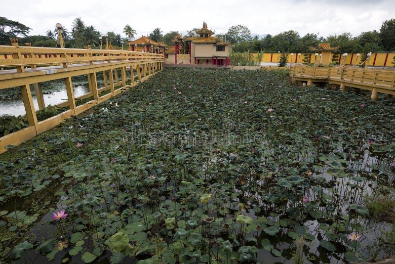 被看见的飞腓节Yeen,孔子寺庙, Chemor,马来西亚 图库摄影