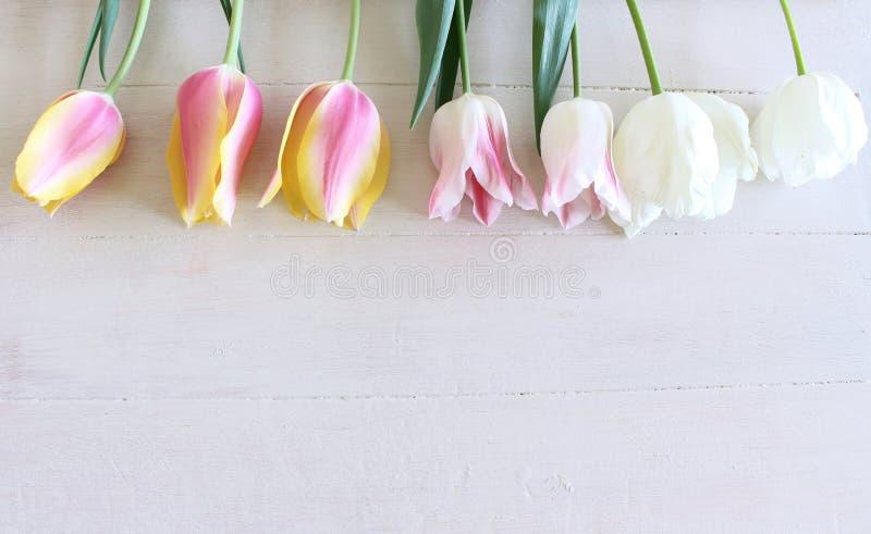 被称呼的储蓄照片 春天女性场面,花卉构成 束在白色背景的美丽的郁金香 r 库存图片