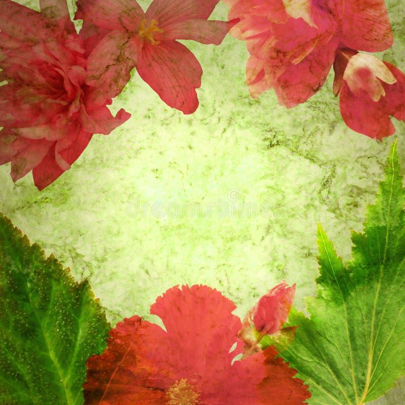 被称呼的花卉框架 库存图片
