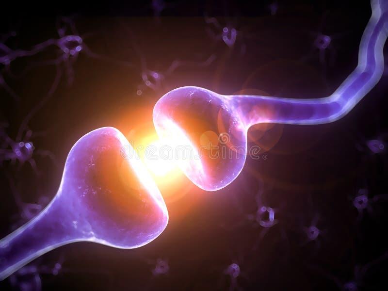 被突出的感受器官 向量例证