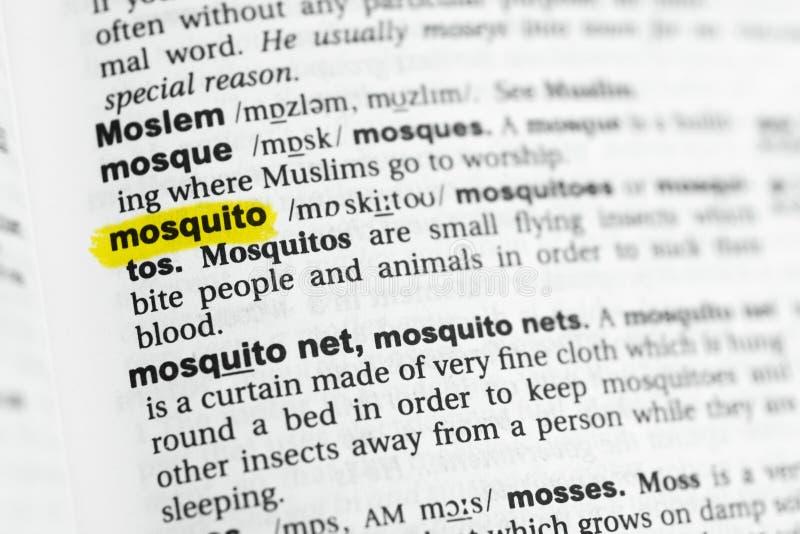 被突出的英国词`蚊子`和它的定义在字典 库存图片