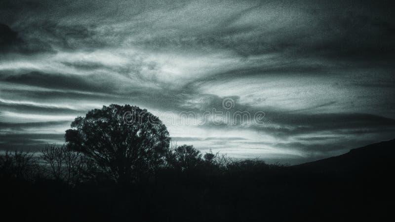 被绘的天空 库存图片