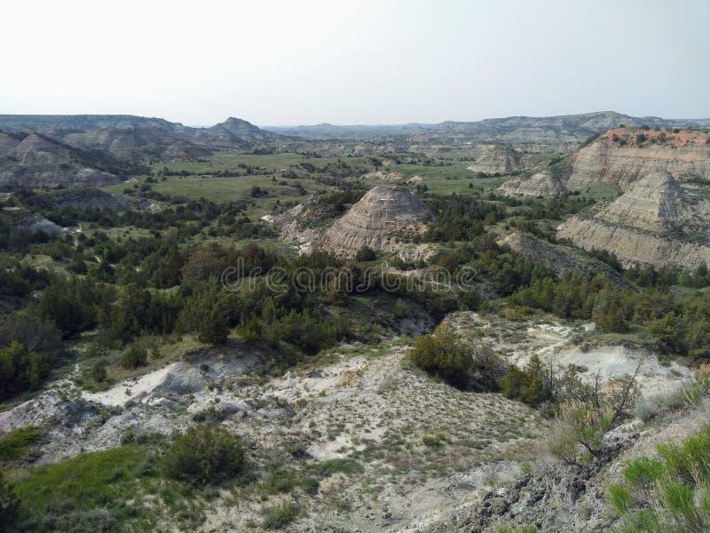 被绘的峡谷,西奥多・罗斯福国家公园,北达科他 免版税库存图片