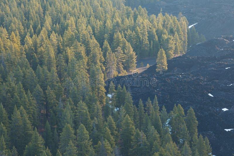 被绘的沙丘如被看见从炭渣锥体的顶端在拉森火山国家公园,在一好日子,以熔岩为特色 免版税库存图片