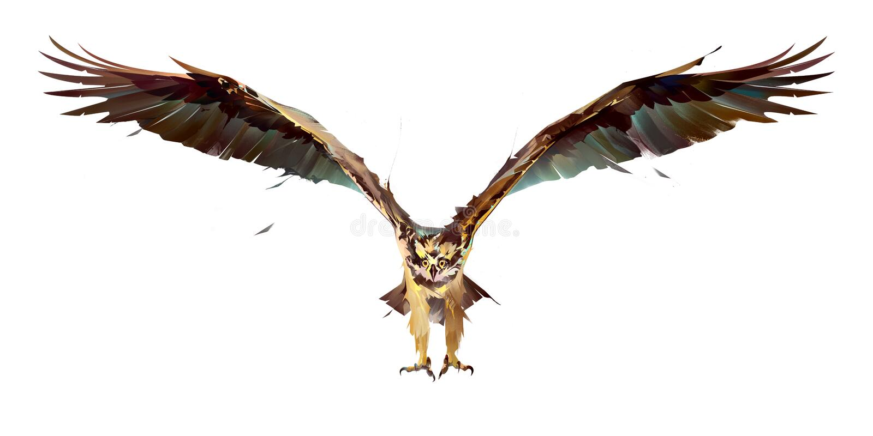 被绘的鸟白鹭的羽毛在飞行中在白色背景 皇族释放例证