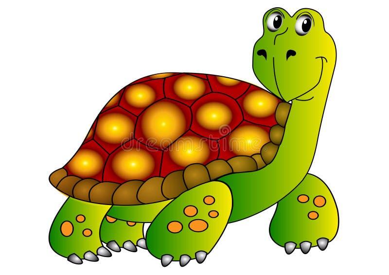 被绝缘的害羞的水龟白色 皇族释放例证