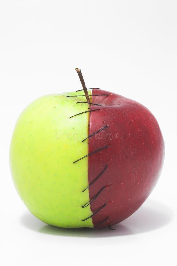 被缝的苹果 免版税库存照片