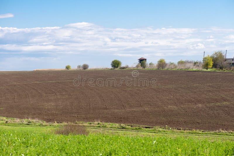 被耕的域横向 免版税库存照片