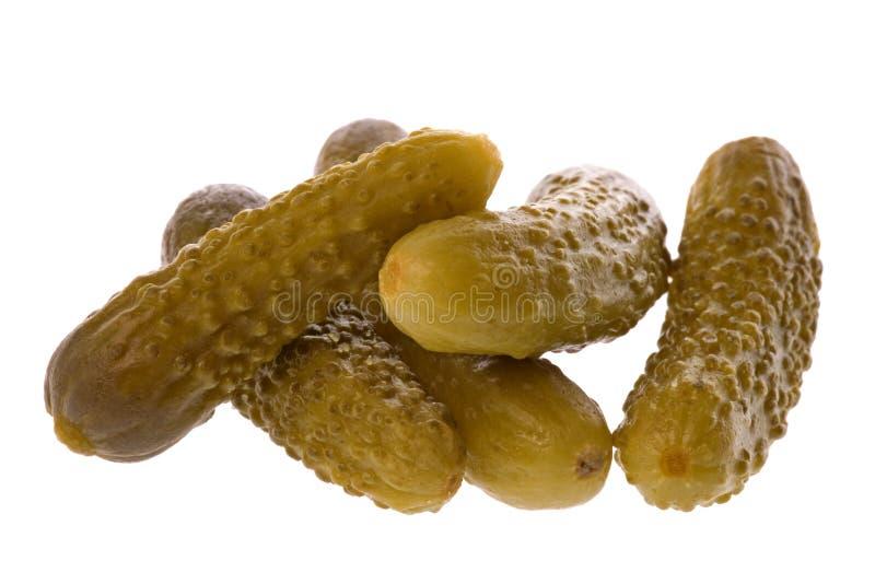 被腌制的嫩黄瓜 免版税图库摄影