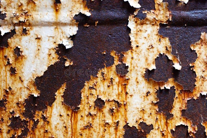 被腐蚀的白合金背景 生锈的白色被绘的金属墙壁 与铁锈削皮油漆条纹的生锈的金属背景  库存照片