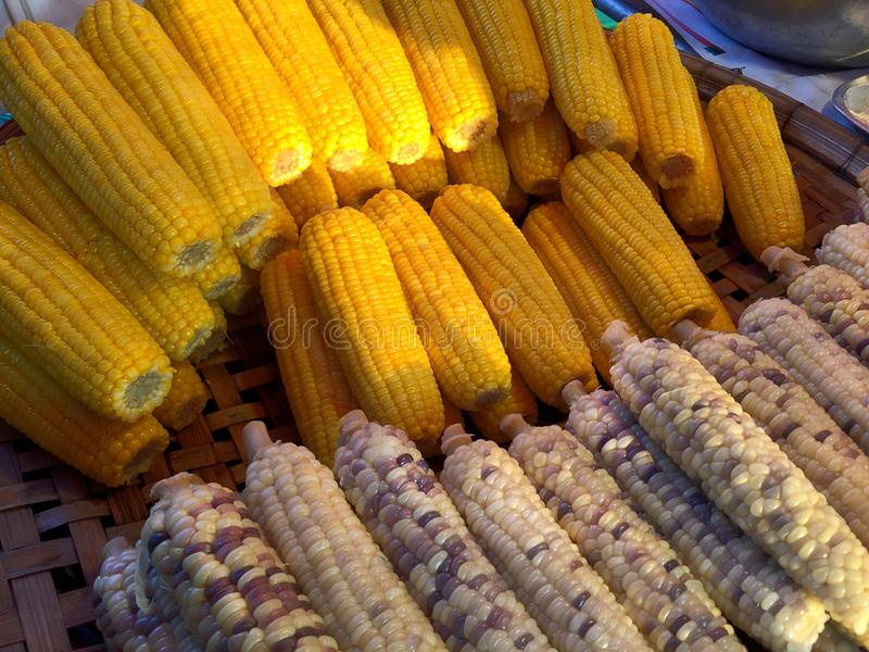 被蒸的黄色和白色玉米 库存图片