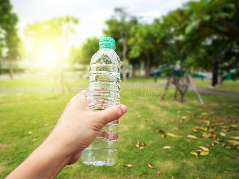 被装瓶的水在公园 免版税库存图片