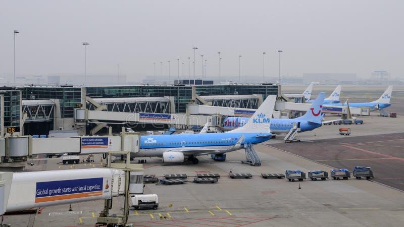 阿姆斯特丹,荷兰: 被装载在Schipol机场的KLM飞机 免版税库存照片