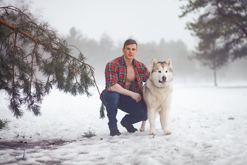 被解扣的衬衣的年轻肌肉人坐并且拥抱狗爱斯基摩狗在步行在冬天有薄雾的森林里 免版税库存图片