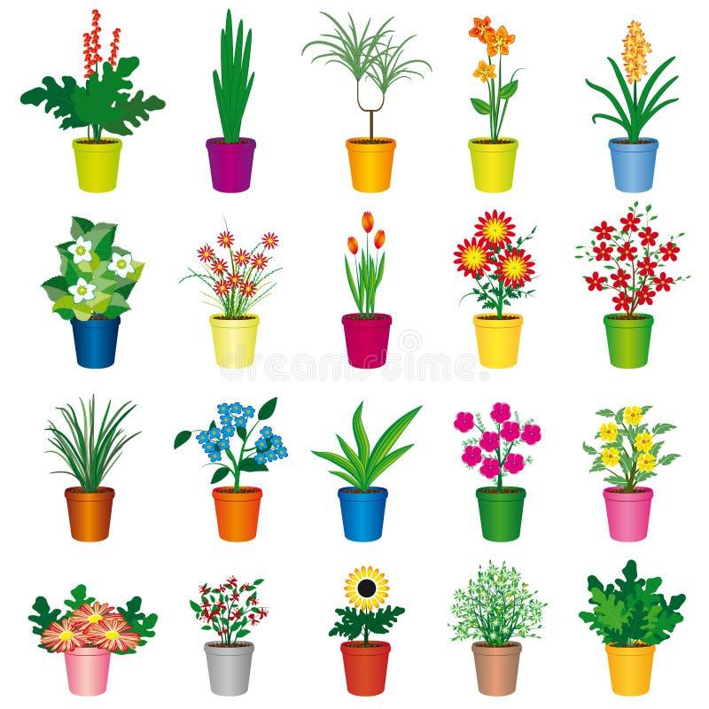 被设置的五颜六色的花盆 免版税库存照片