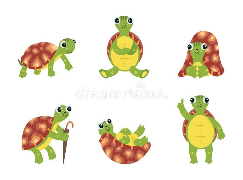 被设置的愉快的动画片乌龟-与棕色壳的逗人喜爱的绿浪动物 向量例证