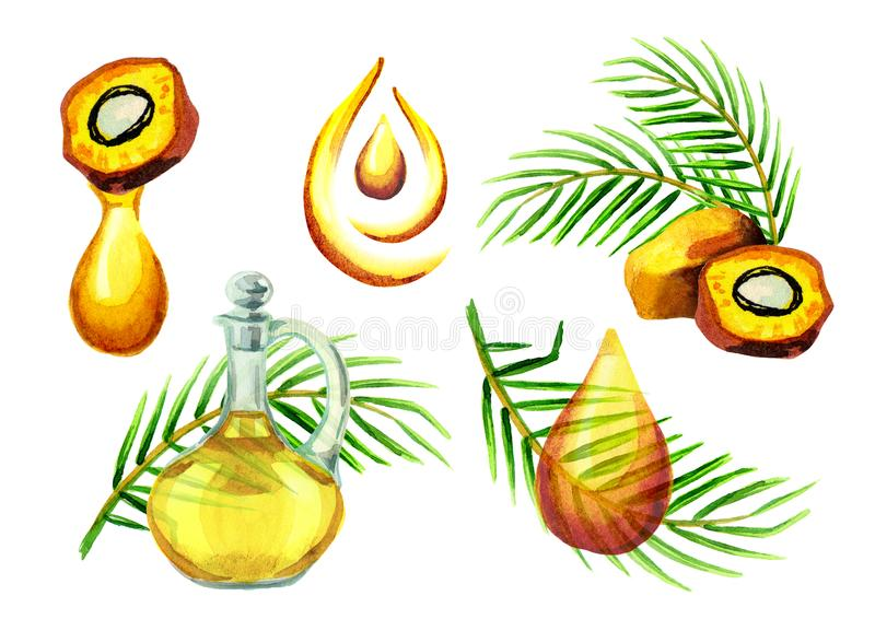 被设置的棕榈油simbols 库存例证