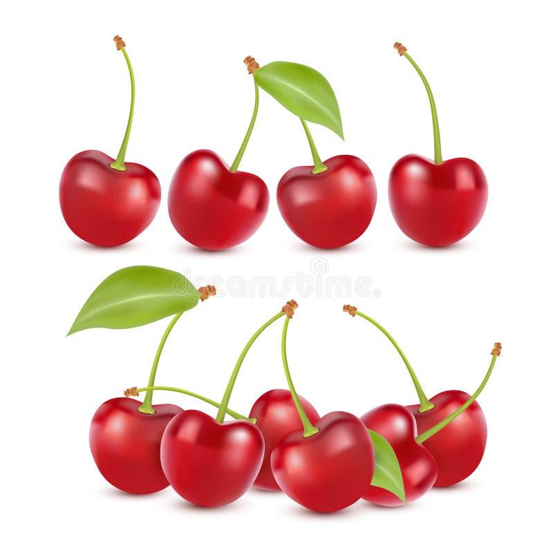 被设置的樱桃现实果子传染媒介象 查出的向量例证 皇族释放例证