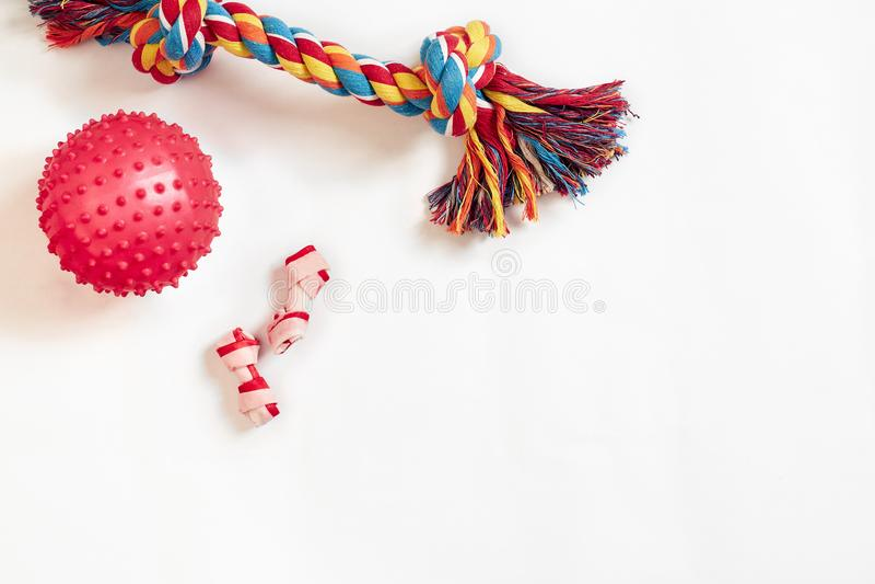 被设置的狗玩具:五颜六色的棉花狗玩具和桃红色球在白色背景 免版税图库摄影