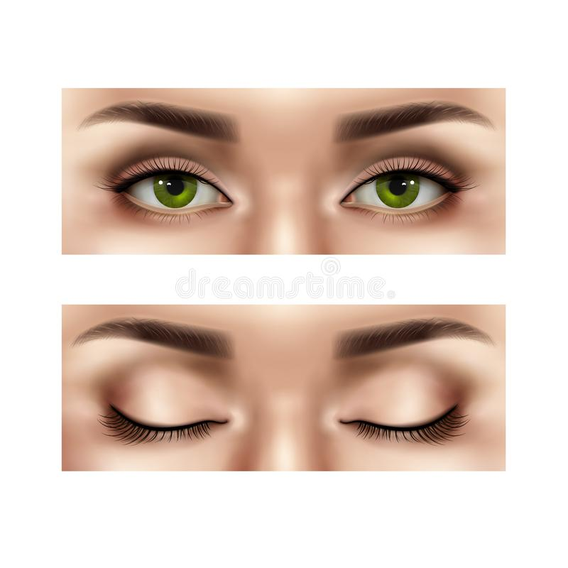 被设置的现实女性眼睛 库存例证