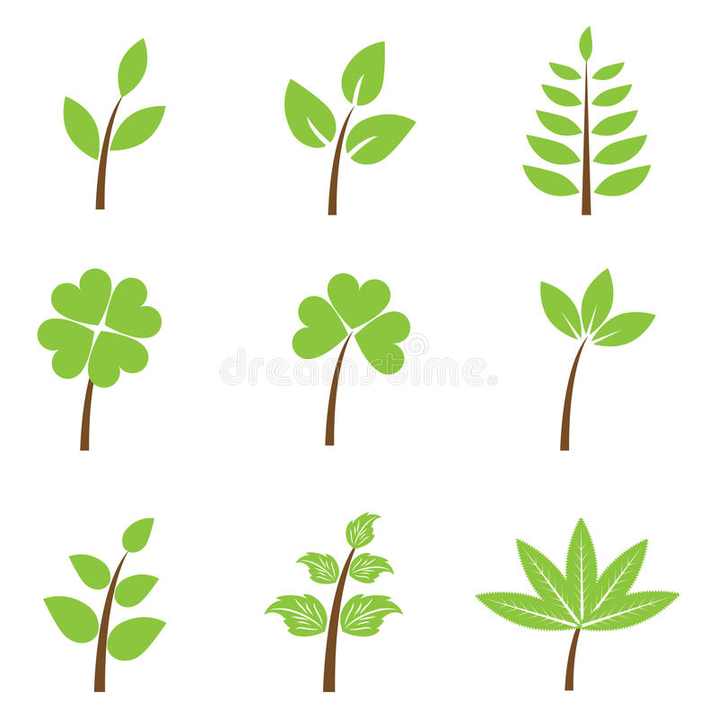 被设置的绿色叶子 皇族释放例证
