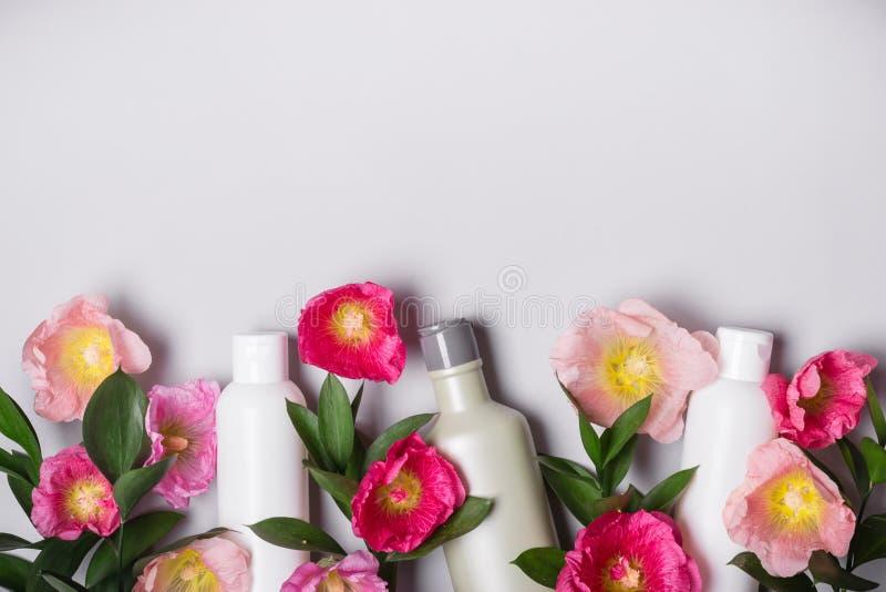 被设置的自然化妆用品 有机产品和狂放的草本和花冬葵 库存图片