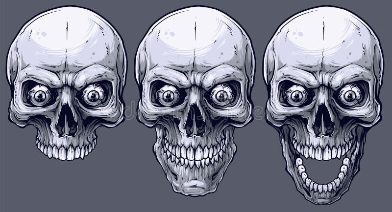 被设置的详细的图表黑白人的头骨 向量例证