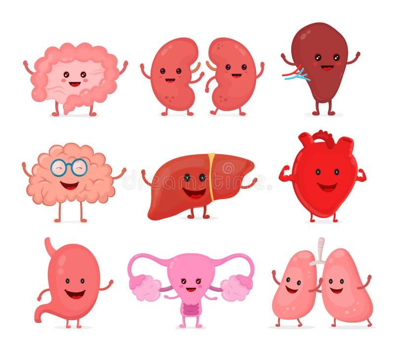 被设置的逗人喜爱的微笑的愉快的人的健康强的器官 向量例证