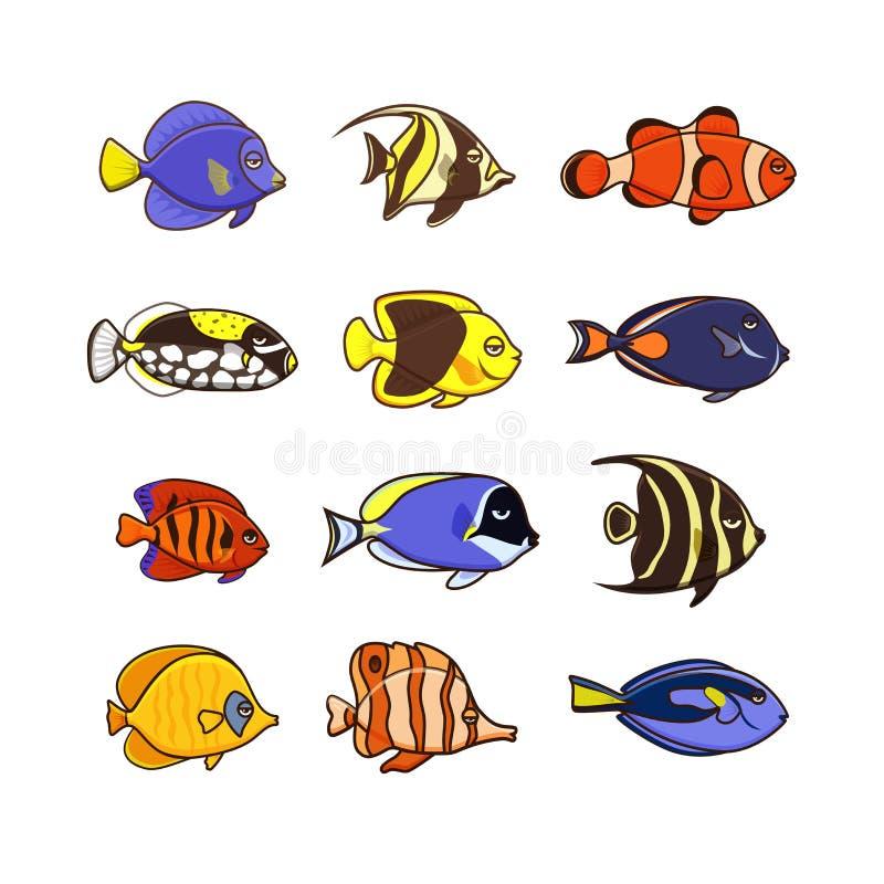 被设置的逗人喜爱的鱼传染媒介例证象 热带鱼,海鱼图片