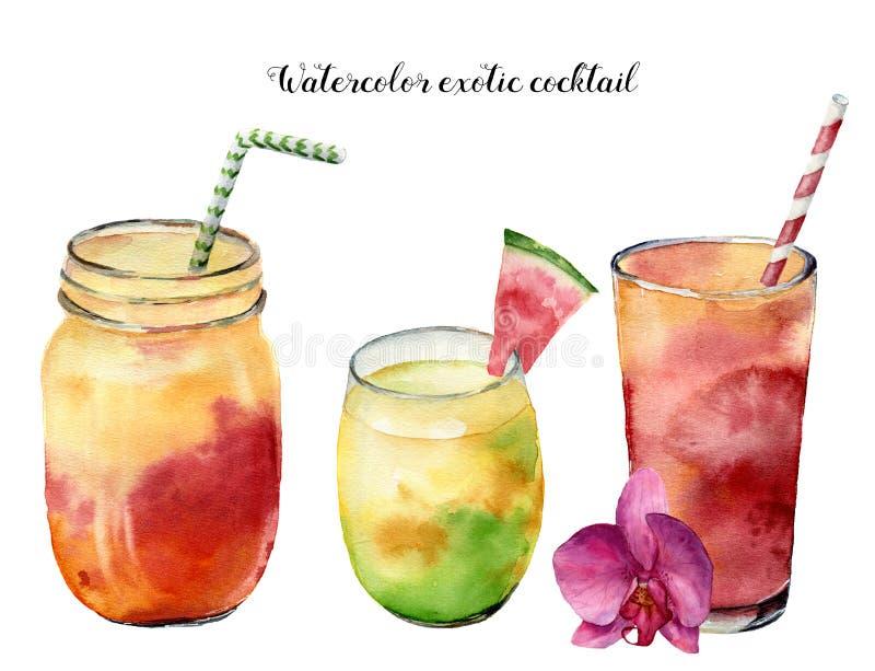 被设置的水彩异乎寻常的鸡尾酒 手画在白色背景隔绝的夏天热带饮料 食物例证 为 向量例证