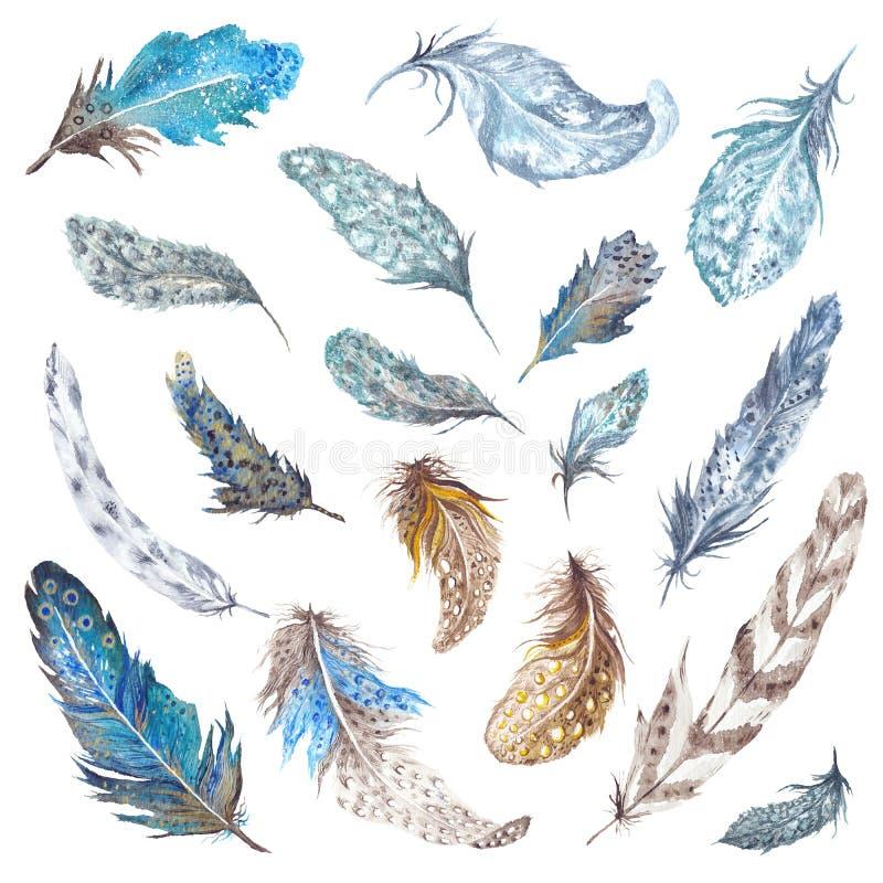 被设置的水彩羽毛 向量例证