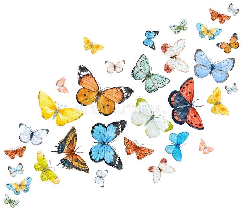 被设置的水彩蝴蝶 向量例证